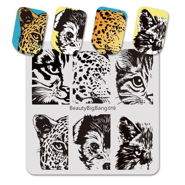 Cat Tiger Eye Design Square Nail Art Stamping Plate For Manicure BBBS-019