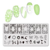 Nature Leaves Plants Design Image Nail Stamping Plate BBBXL-084