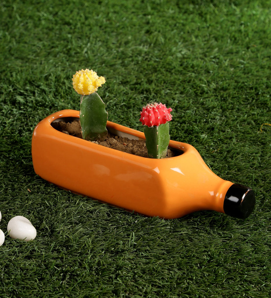 Ceramic Yellow Bottle Planter Pot