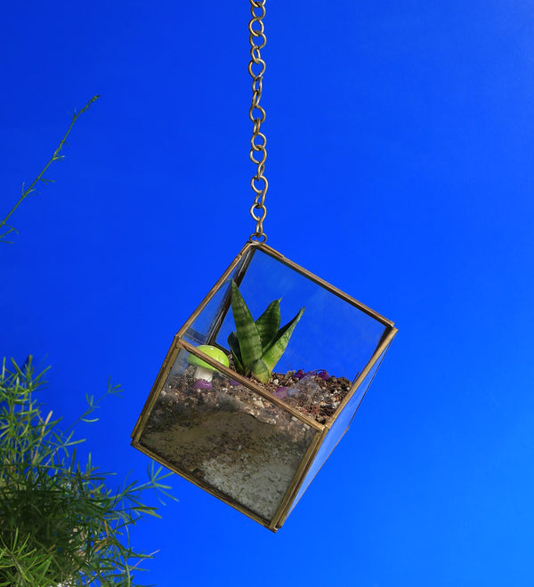 Hanging Glass Triangular Hut Terrarium