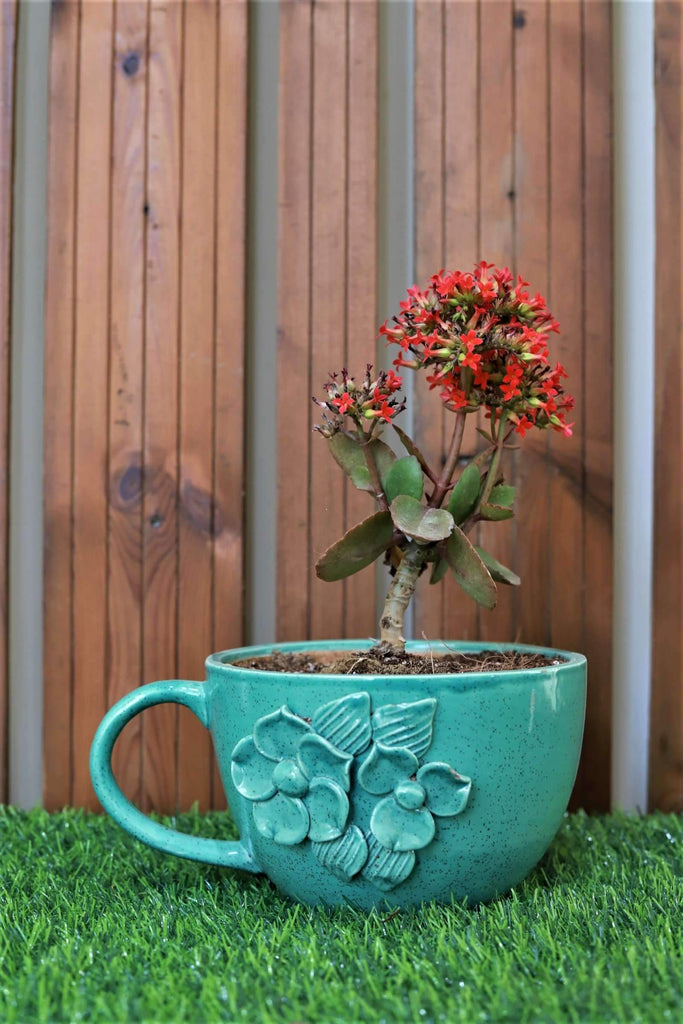 Ceramic Blue 13cm Flower Cup Shaped Pot