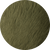 color_moss