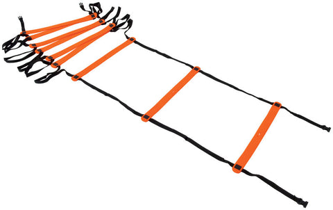 Precision Indoor 4 Metre Speed Ladder