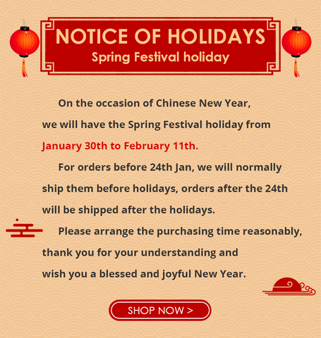 Spring Festival Shipping Time 2019