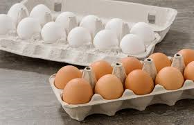 Eggs Cage Eggs 600gm Retail Size Golden Eggs (Sold as Carton Only : 12 Dozen) *pre-order 5 days*