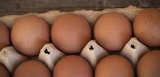 Eggs Cage Eggs 700gm Retail Size Golden Eggs (Sold as Carton Only : 12 Dozen)  *pre-order 5 days*