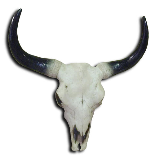 Large Bison Skull Wall Head
