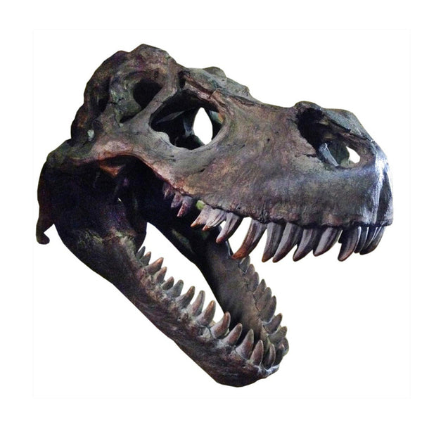 Extra Large T-Rex Skull Wall Head