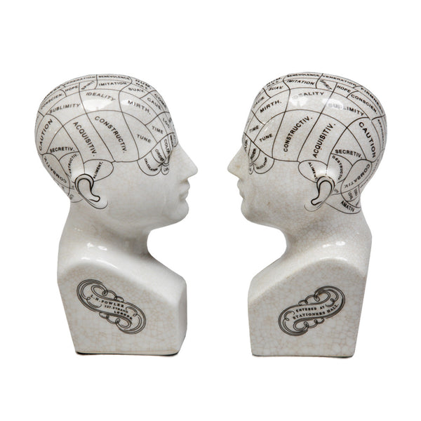 Antiqued Ceramic Phrenology Head Bookends
