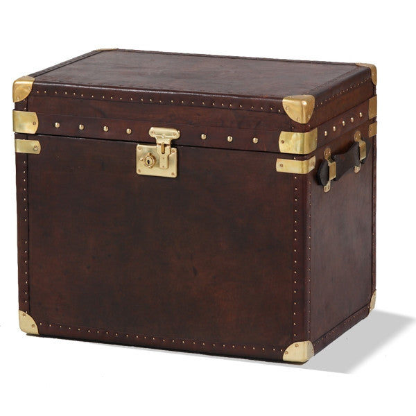 Brown Leather & Brass Travel Trunk