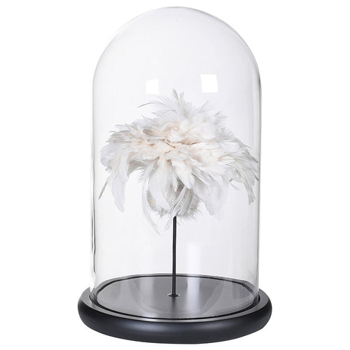 White Feathers under Glass Dome