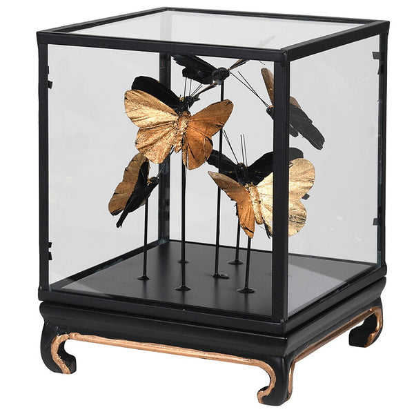 Gold Butterflies in Glass/Black Case