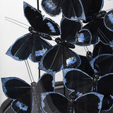 Black and Silver Butterflies Under Glass Dome