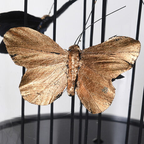 Golden Buterflies Under Glass Dome