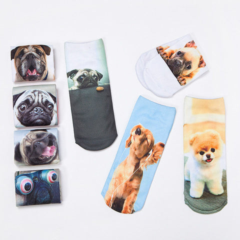 Cute Dog Socks - Viral Gifts