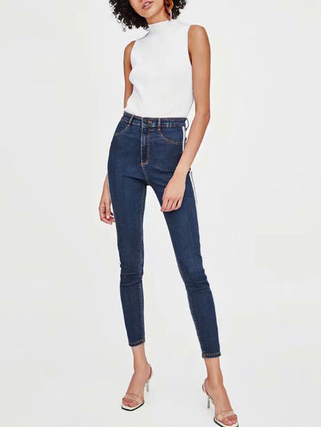 Lanelle Striped High Rise Skinny Jeans