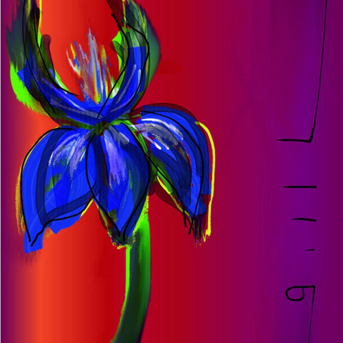 The Lighted Iris- Greeting Card - GallaherGallery.com