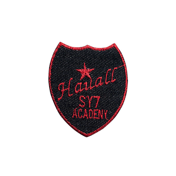 PT597 - Hauall academy (Iron on)