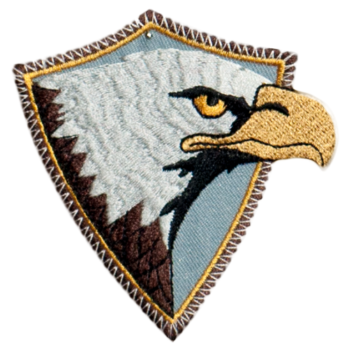 PH79 - Framed Eagle Head (Iron on)