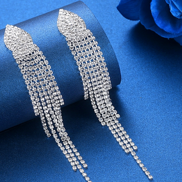 Silver Plated Dangling Earrings