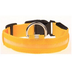 LED HUNDEHALSBAND - MAXIMALE SICHERHEIT