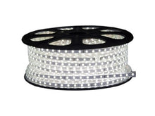 C Bconcept 120 Vsmd3528 50 M Cw 120  Volt Smd3528 Flexible Flat Led Strip Rope Light, 165 Feet Spool, C