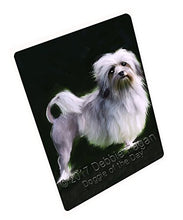 Lowchen Dog Art Portrait Print Woven Throw Sherpa Plush Fleece Blanket D351 (50x60 Fleece)