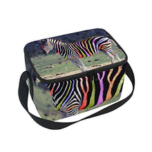 791cab2f235f Lunch Boxes - HomeLoft