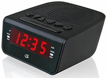 Digital Products International C224b Dual Alarm Clock Radio
