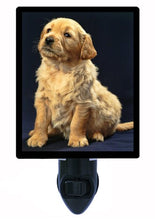 Dog Night Light, Golden Retriever Puppy
