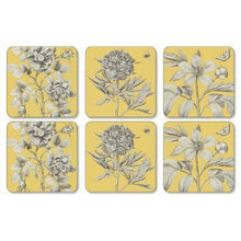 Pimpernel 2010268709 Coasters, One Size, Multicolor