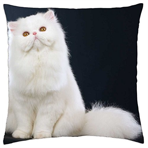 "Louisa Maxine Fluffy White Persian Cat - Throw Pillow Cover Case (18"" x 18"")"