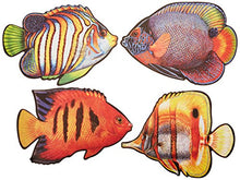 Coral Reef Fish Cutouts   (4/Pkg)