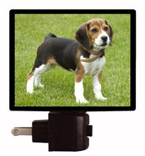Dog Night Light, Beagle Puppy