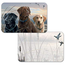 Counterart Set Of 4 Reversible Wipe Clean Placemats Hunting Dogs