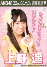 Board theater crawl good-bye AKB48 official life photograph 32nd single selection general election [