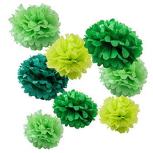 Wy Zworks Set Of 8 (Assorted Green Color Pack) 8