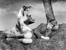 B&W Photo Roddy McDowall in Lassie Come Home 1943