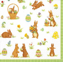 Caspari - Easter Bunny Rabbit Napkins, Party Supplies, 20-Pack