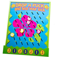 Fun Express Luau Disk Drop Game
