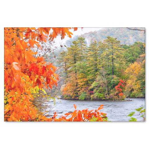 The trees along the Connecticut River Canvas Painting