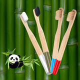 1pc Natural Bamboo Charcoal Toothbrush