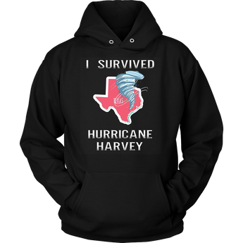 Hurricane Harvey I Survived