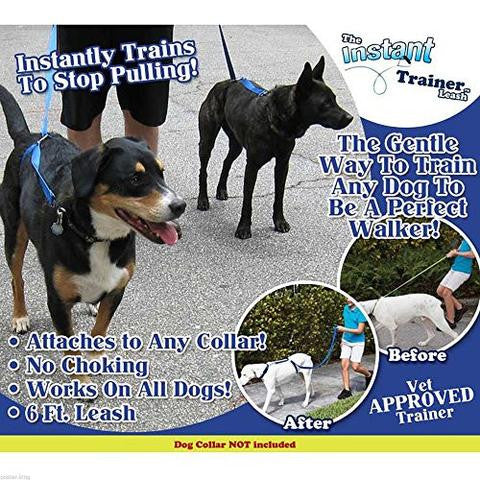 instant trainer dog leash instructions