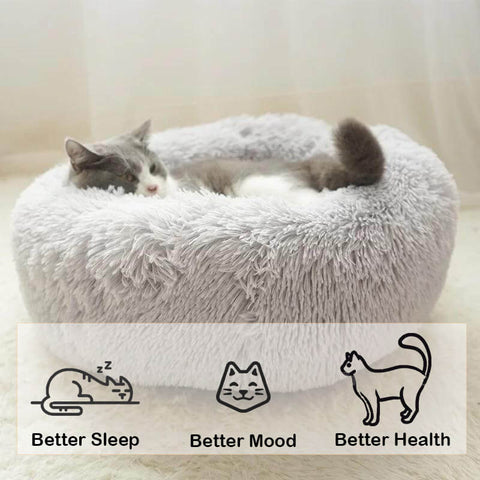 cat-marshmallow-bed