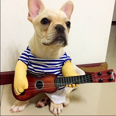 Guitar Player Cosplay Halloween Party Custome - For Cats and Dogs