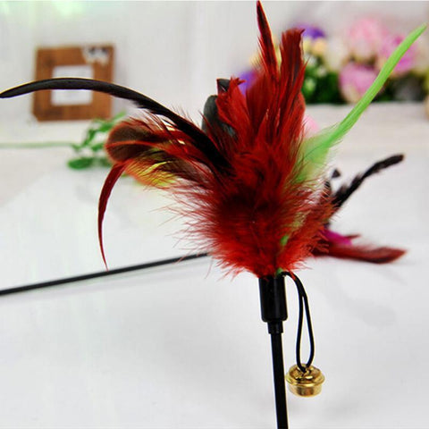 Feather Teaser Small Bell Cat Toy 50cm