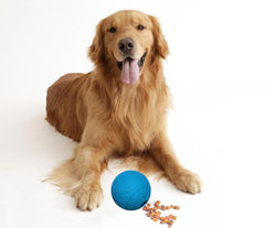 Treat Dispensing Ball for Dogs and Cats - Interactive Treat Training Toy