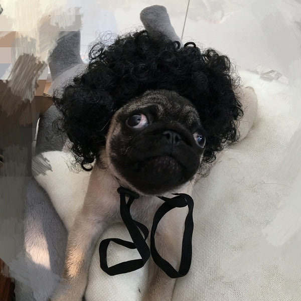 Funny Pet Wig Hair for Cats and Dogs