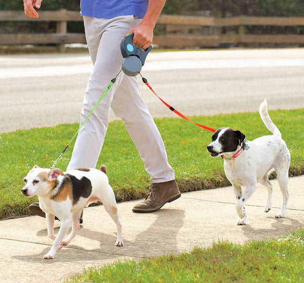 Zero Tangle Pet Leash Duo